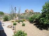 desert garden landscaping ideas pictures designs photos