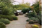 desert landscaping ideas for coolest frontyard decoration stylish