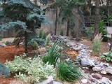 landscaping ideas for small yards small yard landscaping patio