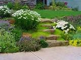 easy landscaping ideas, energy efficient landscaping