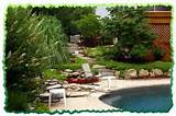 Pool Landscaping Ideas |