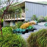 lush landscaping for a mid century modern home sunset com