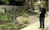 Mid Century Modern Landscape Design