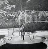 Mid Century Modern Landscape Design * Landscaping Garden Patio Pools ...