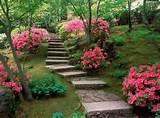 Modern Japanese Garden Design Models 2012