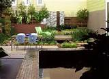 sophisticated modern garden ecological footprint landscape design