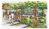 shade garden ideas landscape rendering