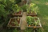 beds raised garden beds design ideas for raised vegetable gardens