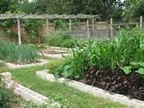 vegetable garden designs plans » landscaping photos