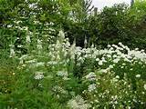 Garden design ideas, garden structure, garden rooms, Sissinghurst ...
