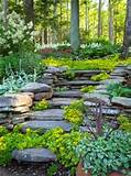 ... Garden With More Color Of Plants 17, Hillside landscaping ideas