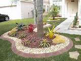 florida landscape ideas landscaping