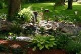 landscaping ideas south florida a