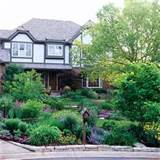 front yard landscaping ideas florida landscape ideas and pictures