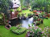 Home Landscaping Ideas: tropical landscaping ideas