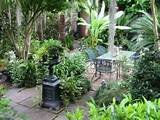 Landscape Tropical Garden Design Ideas