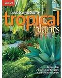 Landscaping with Tropical Plants: Design Ideas, Creative Garden Plans ...