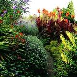 Tropical Garden Design Inspiration | The Best Garden Design, Landscape ...