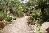 tropical garden path