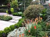 ... tropical - landscape - vancouver - by Glenna Partridge Garden Design