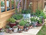 Small Garden Flowers gardening 10 Tips for Designing a Small Garden ...