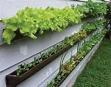 ... Ideas very small backyards Landscaping Ideas container gardens