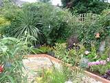 Peter Donegan, Landscaping Dublin » small-garden-ideas plants pebble