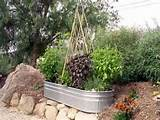 Small Vegetable Garden Design, Small Vegetable Garden Ideas