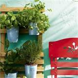 Plant a mini herb garden | small garden ideas | housetohome.co.uk