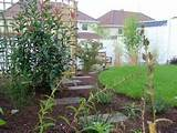 donegan landscaping dublin small garden steppings through plants