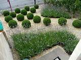 small garden design ideas images small garden design ideas
