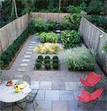and perfect in a small and simple garden plants in this garden
