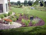 nice plants small rain garden design
