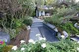 Chelsea Flower Show 2010: 10 great ideas for small gardens - Telegraph
