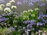 Flower Garden Design Ideas Small Flower Garden Design Ideas ...