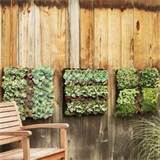 small spaced garden tips and ideas interiorholic com