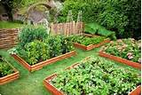 are many small home garden ideas easy to carry out. Although a small ...