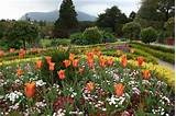 file flower garden at muckross house jpg wikipedia the free