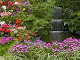 beautiful garden ideas decoration with varies plants home and garden