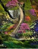 flower for garden flowers for gardens6 care n style