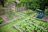 garden planting ideas on raised garden ideas can you dig it