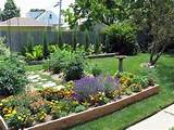 Backyard garden beds, July 9 | Gardening pictures