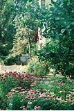 quaint backyard flower garden relaxing down town naperville homivo