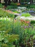 five steps to great perennial flower garden design