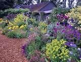 Flower Garden Ideas, Perennial Flower Garden Ideas, Pictures and Plans