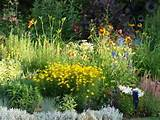 landscaping pictures ideas july perennial gardens 2009