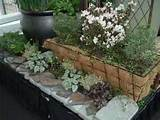 container gardening ideas northwest flower garden show blog