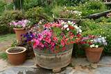 summer flower container gardening ideas southern belle magazine
