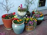 colorful flower garden in containers ideas