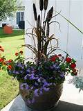 container gardening flower arrangement ideas